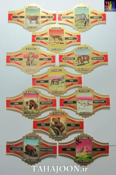 11 عدد لیبل بزرگ سیگار برگ با تصویر حیوانات